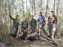 hound hunting success