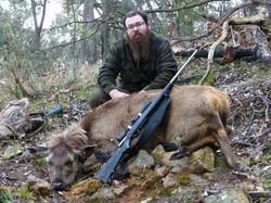 Bretts first sambar deer