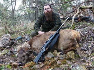 Brett's first sambar deer