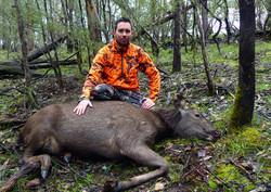 Dale's First Sambar Deer