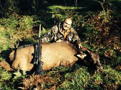kingsley's first sambar deer