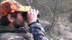 Tom trying to find a sambar deer