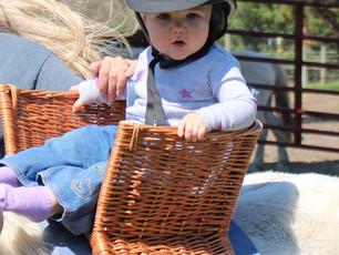Baby Basket Pony Saddle