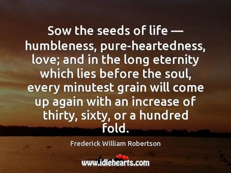 Seed Sower!