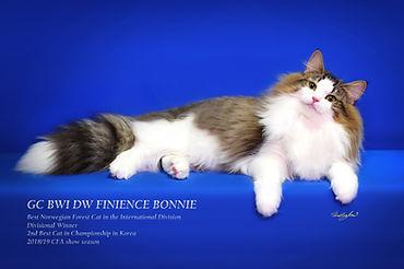Bonnie-GC-photo 2copy.jpg