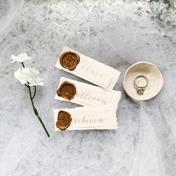 Wax Seal Vellum Place Cards
