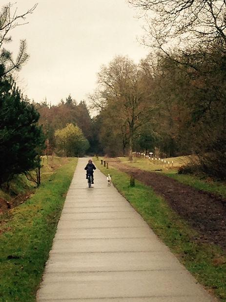 Cycling through De Scherpenbergh golfclub