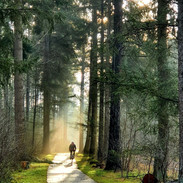Local biking routes