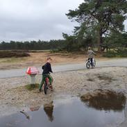 Biking through Hoge Veluwe