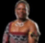 HRH Prince Lonkhokhela -Chief Executive Officer (CEO)