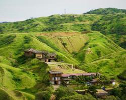 Green Peru