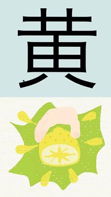6.黄.JPG