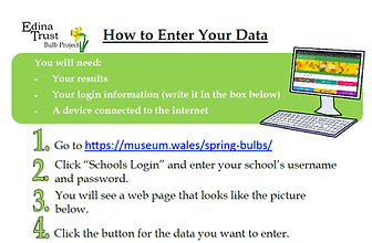 how to enter your data.png