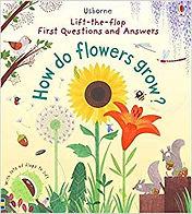 how fo flowers grow.jpg