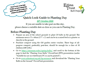 Quick Look Guide to planting day.png