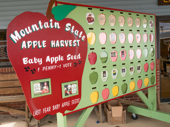 Baby Apple Seed Contest
