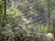 Jardin Oblique, manoir du Tourp