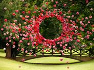 Rosæ Plasticæ #17, parc Napoléon, Thionville