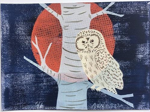 Tawny Owl in the Night Sky mixed media print