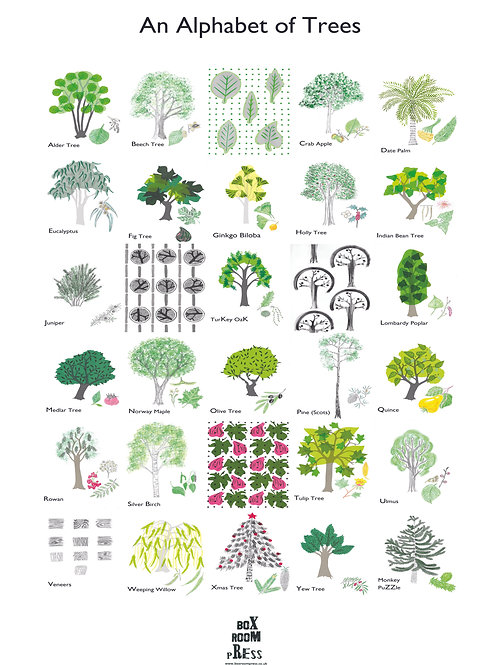 An Alphabet of Trees Print A3 size