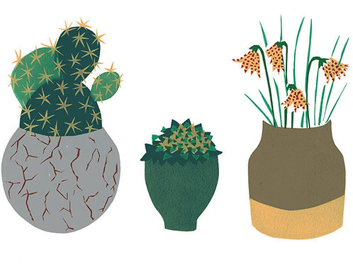 Three Plants in Pots Limited edition screen print
