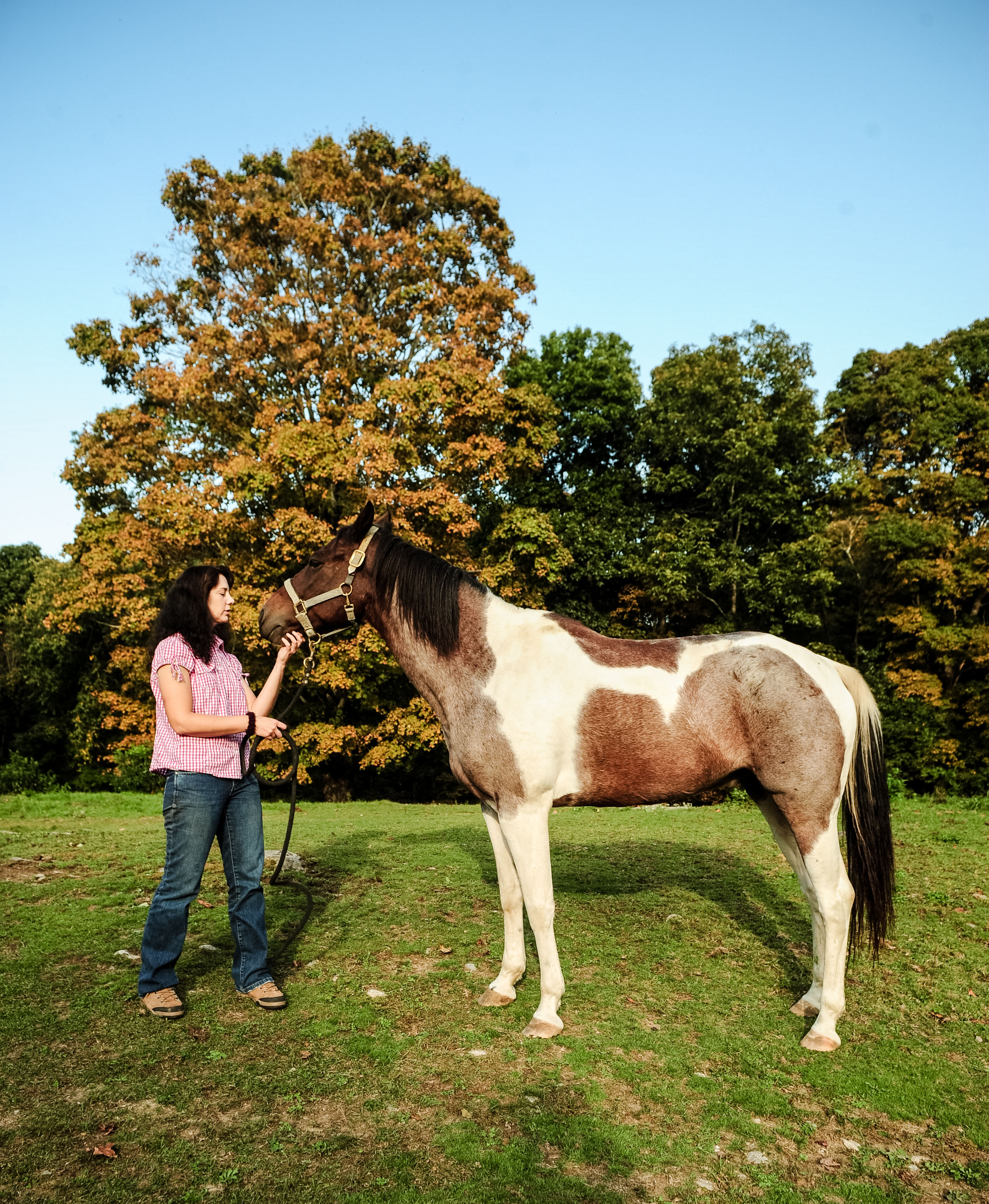 Monica and Rescue Horse