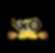 SWOP new star logo.png