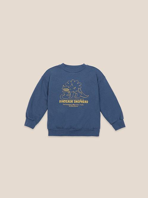 Dino sweatshirt