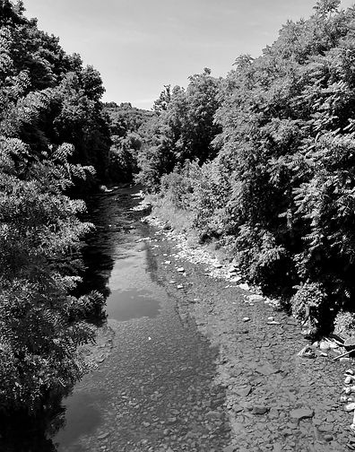 A black and white photo of a ravine in Ithaca, New York.
