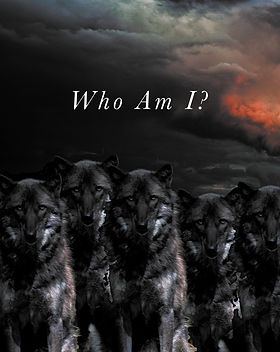 """Wolf pack staring out at viewer in cloudy background with text """"Who Am I?"""""""