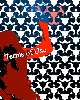 "A red shadow of myself holding a shoe with a patterned background and the title caption, ""Terms Of Use""."