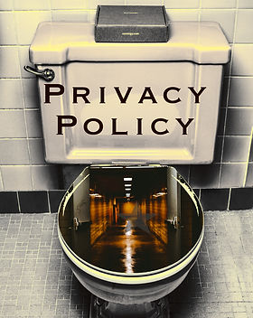 "A public toilet with a hallway in the bowl and a title caption that reads, ""Privacy Policy""."