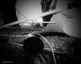 garbage_snake24x18.jpg