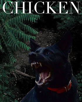 storycover_chicken.jpg