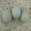 Thumbnail: Olive Egger