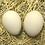 Thumbnail: Porcelain Belgian Bearded D'Uccle Bantam