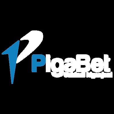 KUMI-PIGABET.png