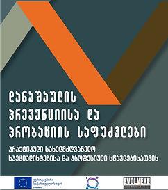 probation guidebook.jpg