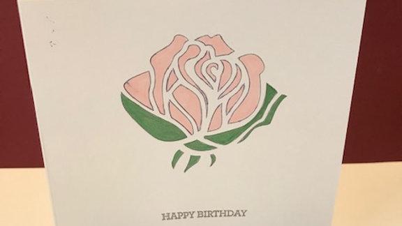Birthday pink rose