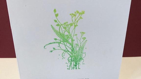 Birthday green colour fade plant