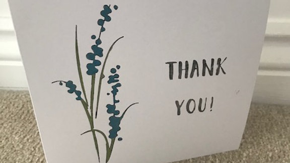 Thank You Bluebells