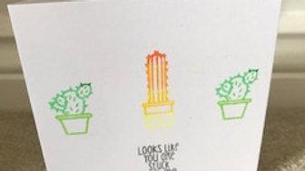 Stuck with me Cactus
