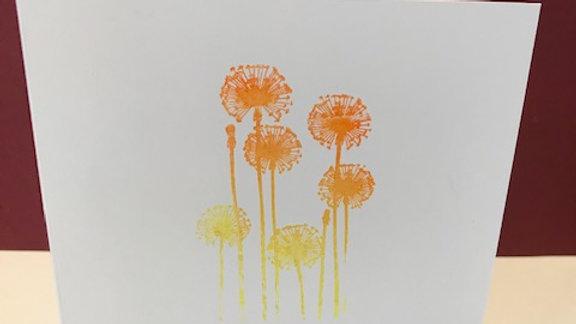 Colour fade dandelions