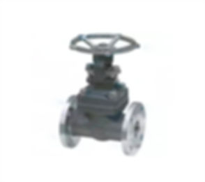 gate-valve-nickel-1.jpg