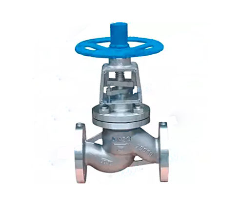 globe-valve-904L-1.jpg