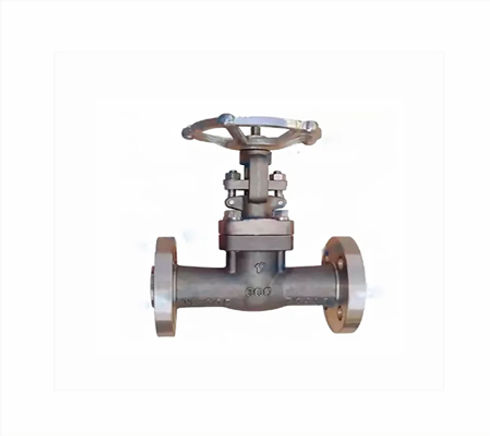 gate-valve-monel-2.jpg