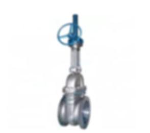 gate-valve-alloy20-1.jpg