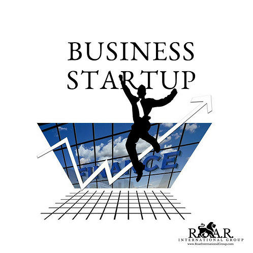 New Business Standard Setup