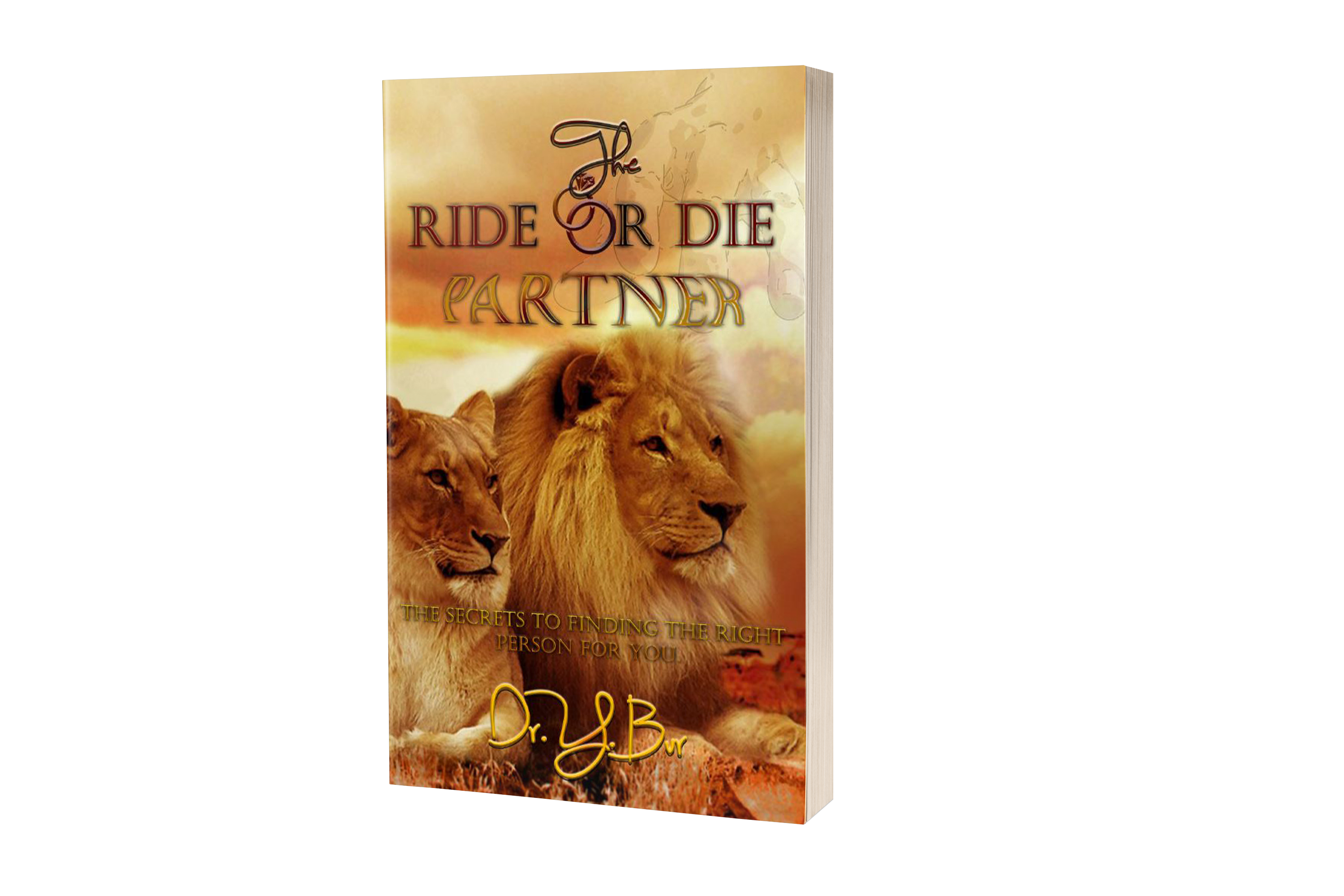 The Ride or Die Partner Book