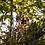 Thumbnail: Süssmund Mantiqueira de Minas (250g)